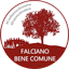 LISTA CIVICA - FALCIANO BENE COMUNE