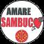 LISTA CIVICA - AMARE SAMBUCO